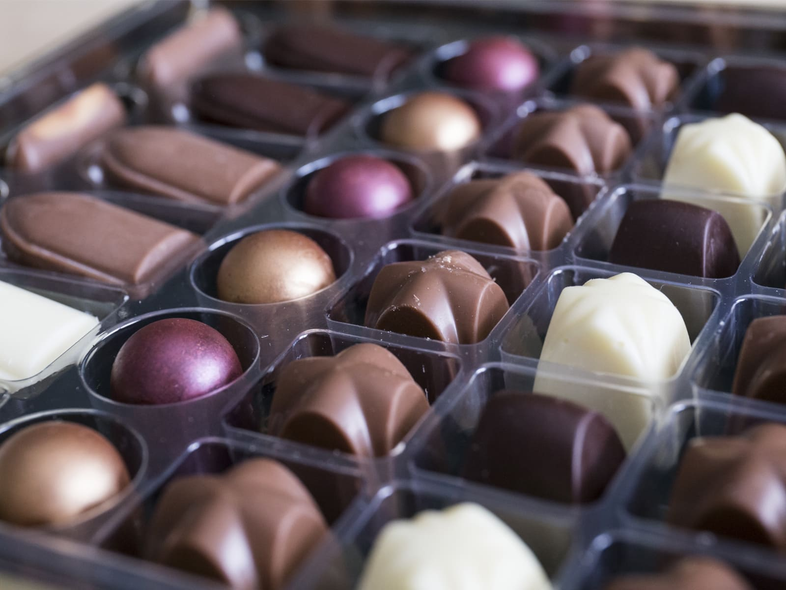 viaje-escolar-fabrica-chocolates-cuenca